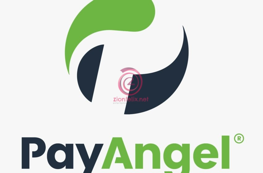 PayAngel Money Transfer Introduces Remitcare In Partnership With Allianz Life Ghana