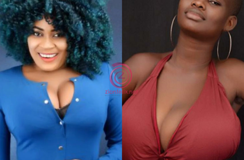 I'm Disappointed In Nayas1, I'll Cut Her Off – Pamela Odame