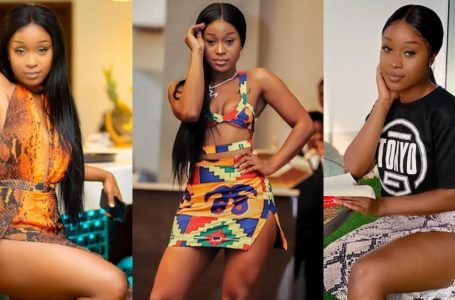 Efia Odo Lands In Ghana And Storms Sista Afia's Star-Studded Birthday Bash (Watch Video)