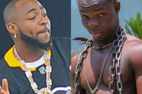 After Refusing To Give Me A Verse, Are You Coming To End SARS In Ghana – AY Poyoo Questions Davido On His Fight With Burna Boy