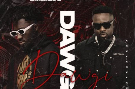 Amerado Joins Forces With Sarkodie On New Song 'Dawgi' – Listen