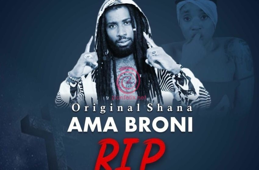 Shana Drops Tribute Song For Late Ama Broni – Listen