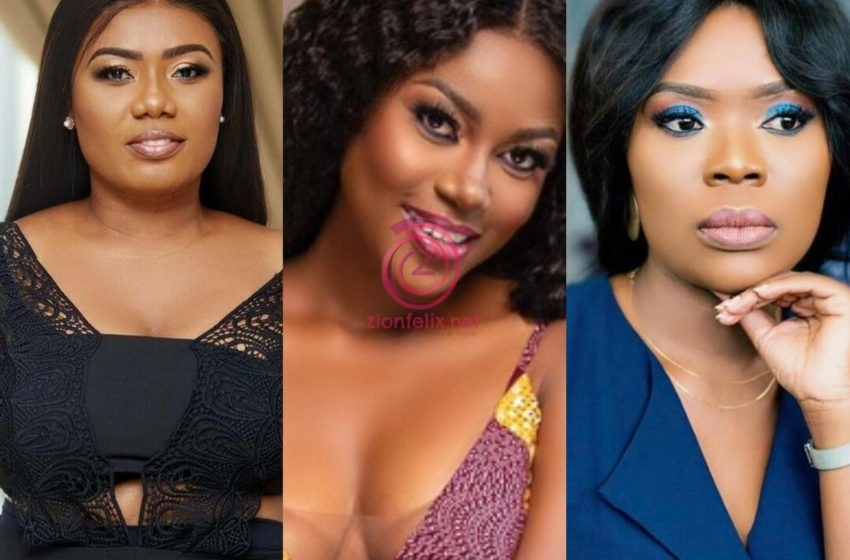 Yvonne Nelson, Bridget Otoo And Other GH Celebrities Descend On Akuffo-Addo Following Nationwide Dumsor (+ Screenshots)