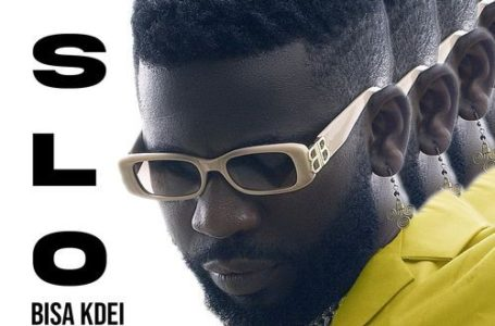 Bisa Kdei Releases New Song 'Slow' – Listen