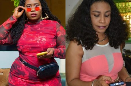 Selassie Ibrahim's Comment Denigrates The Already Struggling Acting Industry – Lydia Forson (+ Screenshot)